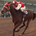 Seabiscuit's picture